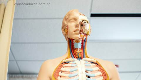 Boneco com garganta aberta, como cuidar da garganta inflamada